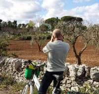 Guided e-bike tours in central Puglia
